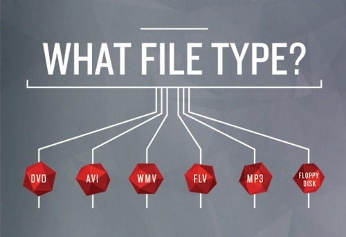 5 - What File Type Do You Need? Inforgaphic.jpg